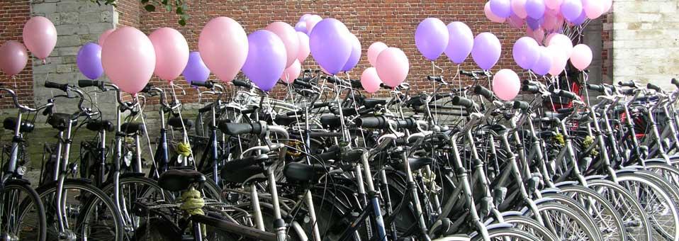 Fietstour door Leiden