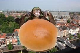 Broodje aap wandeling Leiden